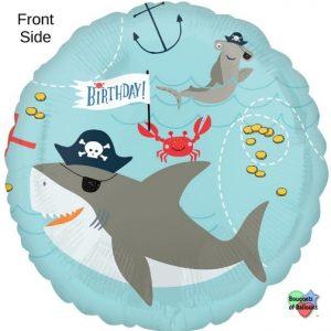 "17"" Ahoy Birthday"